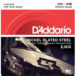 Nickel Plated Steel EJ63i pour Banjo tenor irlandais