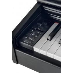 DP 300 G